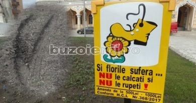 Premieră. A apărut de azi în Buzău. Colaborare între primarul Toma și pictorița Lafargue