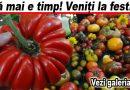 Festivalul tomatelor în parcul Marghiloman. Roșii de toate formele și culorile. Iată galeria foto