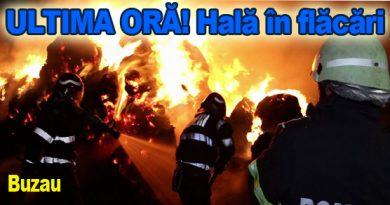 Fabrică de termopane, trei mașini de pompieri nu dovedesc focul